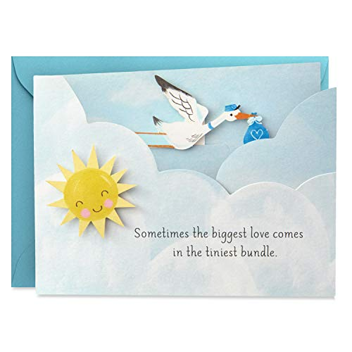 (Hallmark Paper Wonder Paper Craft Baby Shower Card for Baby Boy (Stork))