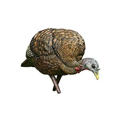 (Avian-X Feeder Hen Turkey Decoy,  Lifelike Collapsible Decoy With Carbon Stake and Carry Bag)