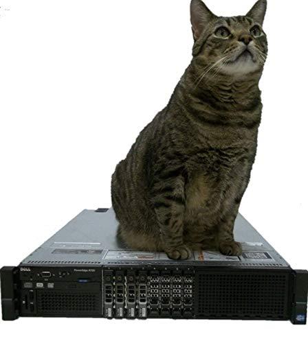 PowerEdge R720 Virtualization Server 16-Cores 256GB of RAM 4x300GB (Best Ram For Virtualization)