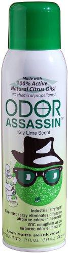 Odor Assassin 12 oz. Air Freshener Fine Mist Spray, Key Lime