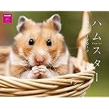 カレンダー2019 壁掛け ハムスターカレンダー(ネコ・パブリッシング) ([カレンダー])