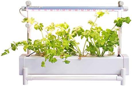ZDYLM-Y Smart Garden, 11 vainas Temporizador automático La germinación Kit con una función de la Bomba de Agua, Nivel de Agua Observador