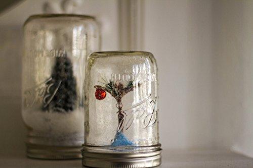 snow globes jars - 6