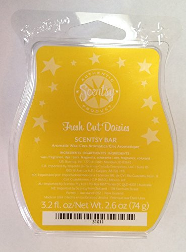 Scentsy Daisies Wickless Candle Squares