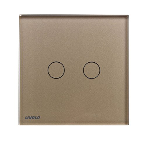 Changeshopping(TM) 2Gangs 1Way 110V 220V Wall Light Touch Switch Crystal Glass Panel