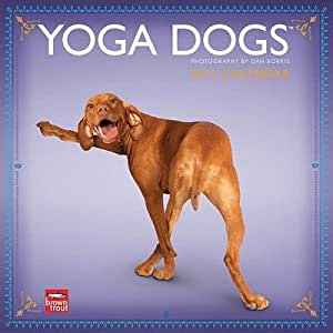 (12x12) Yoga Dogs - 2013 Wall Calendar