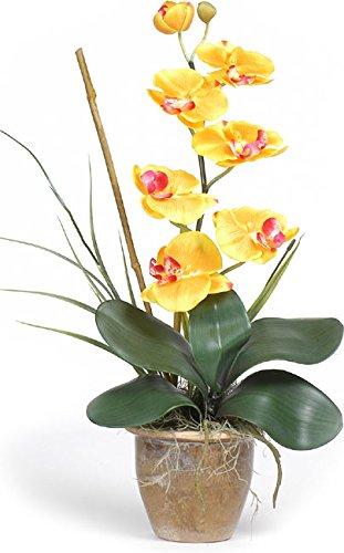 Plugtronics Contemporary Single-stem Silk Orchids (Gold/Yellow)