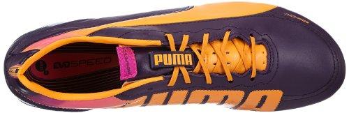 Blackberry Violett evoSPEED Cordial 102859 Violett Pink fluo Puma FG 2 Herren 1 02 L Fußballschuhe FWnp1qgT