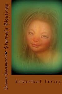 Stormy's Blessings: Silverleaf Series (Volume 1)