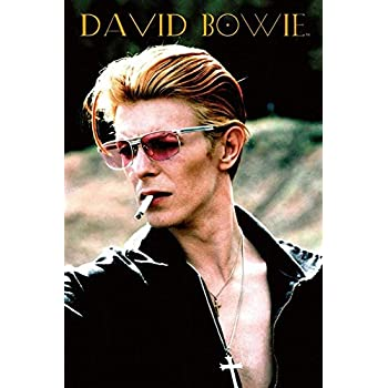Amazon com: DAVID BOWIE POSTER Mug Shot RARE HOT NEW 24x36