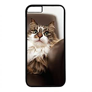 Hard Back Cover Case for iphone 6,Cool Fashion Black PC Shell Skin for iphone 6 with Cute Cat