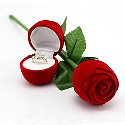 Leysin Velvet Rose Love Ring Box Gift Item for Girlfriend and Boyfriend, Special Valentine Day Gift for Couple, 15 Grams, Pack of 1: Amazon.in: Home & ...