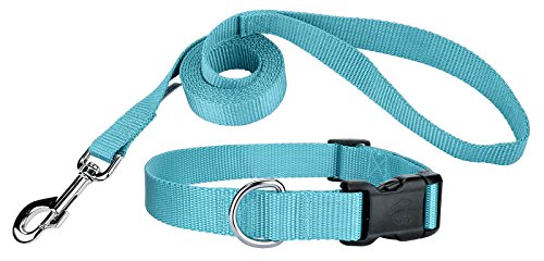 Country Brook Design 3/8 Inch Deluxe Nylon Dog Collar and Leash - Ocean Blue-XS (Plain 8 Leash)