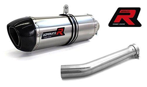 Dominator Exhaust Silencieux /échappement YAMAHA YZF R1 RN04 98-01 HP1 DB KILLER