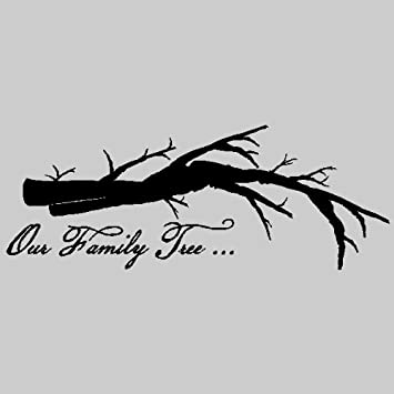 Amazoncom Our Family Treefamily Wall Quotes Words Sayings