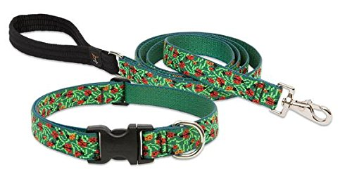 Lupine Pet Beetle Mania Collar & Leash Deluxe SET Size: LARGE