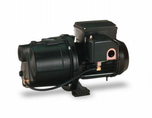 Pentair Water-Flotec-Simer 2802 3/4 HP Cast Iron Shallow Well Jet Pump by Pentair