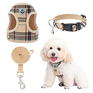 EXPAWLORER Puppy Harness and Leash – Small Dog Collar and Leash – Classic Plaid Small Dog Vest Harnesses No Pull…