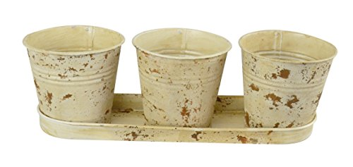 Red Carpet Studios 20036 3 Metal Bucket Planters with Tray, Buttercream ()