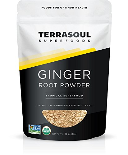 Terrasoul Superfoods Organic Ginger Powder, 1 (Ginger Root Powder)