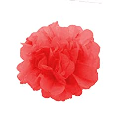 Features: ★100% new and high quality. ★A good helper for decorating Wedding and Parties. ★Paper flowers are light and soft than plastic flowers. ★So easy to unfolding effortlessly. ★Bright and varied colours. Package included: ★20x DIY Paper ...