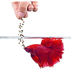 SunGrow Betta Pellet Food, 1 Ounce, Color Enhancer, Immunity Booster Floating Feed, Nutritionally Balanced for Healthy Fish, Easily Digestible Food, Balanced Diet for Daily Feeding