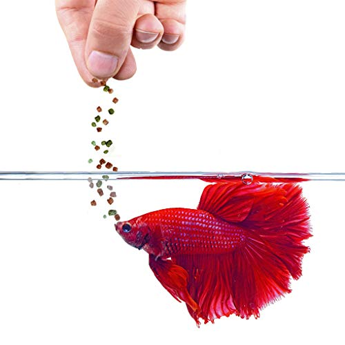 1 oz. Betta Food --- Color Enhancer, Immunity Booster Floating Feed - Nutritionally balanced for Healthy Fish - Easily Digestible Food - Balanced Diet for Daily Feeding - Slow-Dissolving Pellets