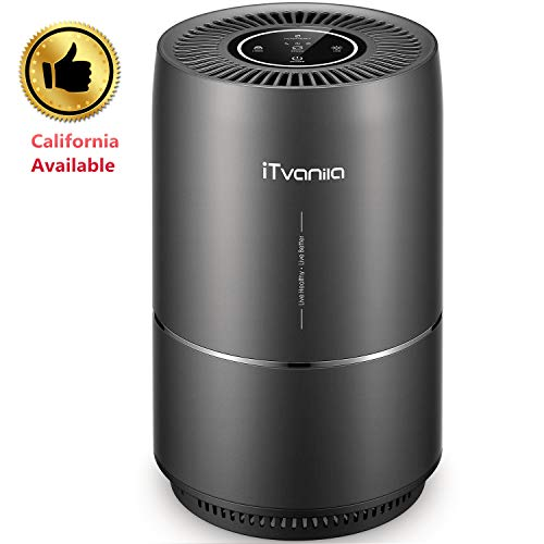 iTvanila Air Purifier, Home Air Purifiers for Smokers Odor Pets, 3 in 1 True HEPA Filter, Quiet in Bedroom, Filtration System Cleaner, Optional Night Light, 2 Years Warranty - High Efficiency Particulate Air