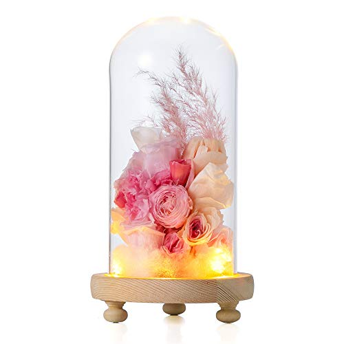 NCYP Glass Dome with Wood Base LED Light Round Bell Jar Clear Cloche Display Case for Rose Flowers Home Or Office Tabletop Decoration Valentine's Day Wedding Centerpiece DIY (Small D3.5 x H7.1) (Office For Flowers Decoration)