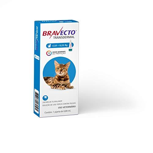 Antipulgas e Carrapatos Bravecto MSD para Gatos de 2,8 a 6,25 kg - 1 Pipeta de 0,89ml