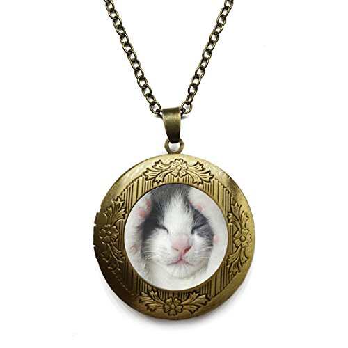 Vintage Bronze Tone Locket Picture Pendant Necklace Sleeping Cat Paw Included Free Brass Chain Gifts Personalized