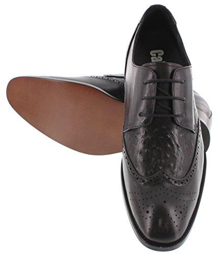 Calden–k626227,1cm größer die Höhe Steigerung Aufzug Schuhe (schwarz-Leder unten