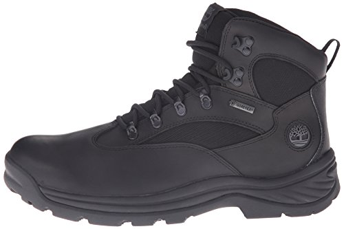 Timberland Men's Chocorua Gore-Tex Hiker