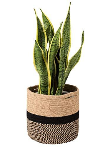Goodpick Sturdy Jute Cotton Rope Plant Basket Modern Woven Basket For 25cm Flower Pot Floor Indoor Planters 28cm X 28cm Storage Organizer Basket