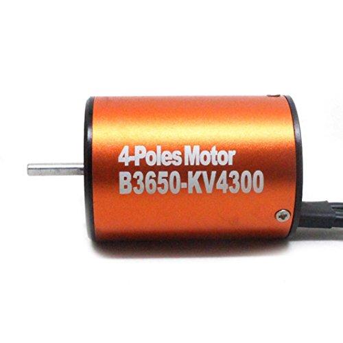 Alluing 3650 4300KV Length 50mm Sensorless Brushless Motor for 1/10 RC Car (orange) by Alluing (Image #4)