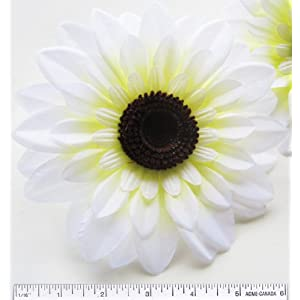 "(2) Silk White Big Sunflowers sun Flower Heads , Gerber Daisies - 5.5"" - Artificial Flowers Heads Fabric Floral Supplies Wholesale Lot for Wedding Flowers Accessories Make Bridal Hair Clips Headbands Dress 53"