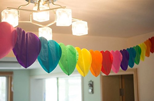YCT Rainbow Paper Garland - 110 Inch Long