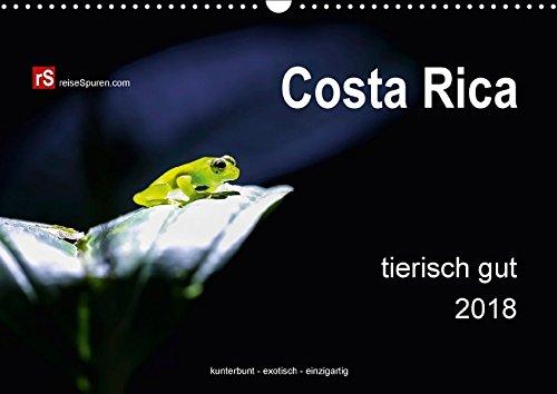 Costa Rica tierisch gut 2018 (Wandkalender 2018 DIN A3 quer): Costa Ricas unglaublich vielfältige Tierwelt in freier Wildbahn eingefangen - kunterbunt ... [Kalender] [Jul 21, 2014] Bergwitz, Uwe