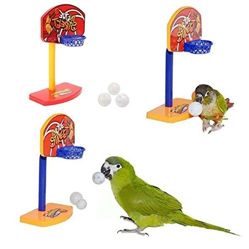 Bazaar 3pcs aves de compañía masticar perico loro juguetes bolas de campana birdie aro de baloncesto prop