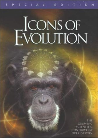 Icons Of Evolution - Icon Point