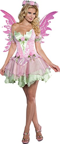 Lady Fairy Costume (Fun World InCharacter Costumes Women's Flirtatious Fairy Costume, Green/Pink, X-Large)