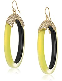 Pave and Oval Lucite Hoop Ear Wire Drop Earrings