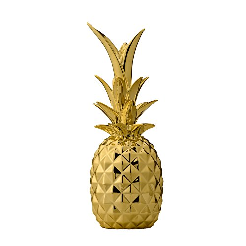 Pineapple Planter - 5