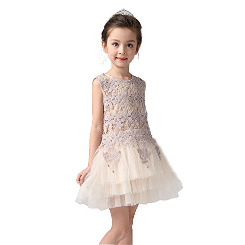 Little Toddler Flower Girl Dress for Wedding Prom Party Short Champagne Tulle Hollow Flower Girls Dresses (Toddler Fancy Dress)