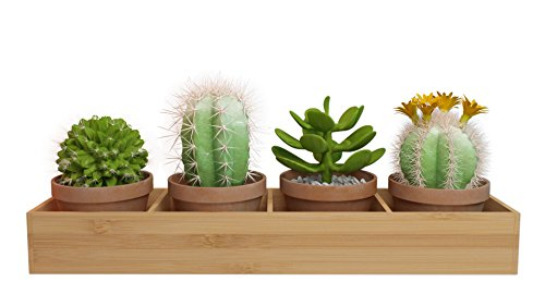 Rectangular Wooden (Bamboo) Window Planter Box Four-sectioned Tray for Succulents, Herbs And Flowers