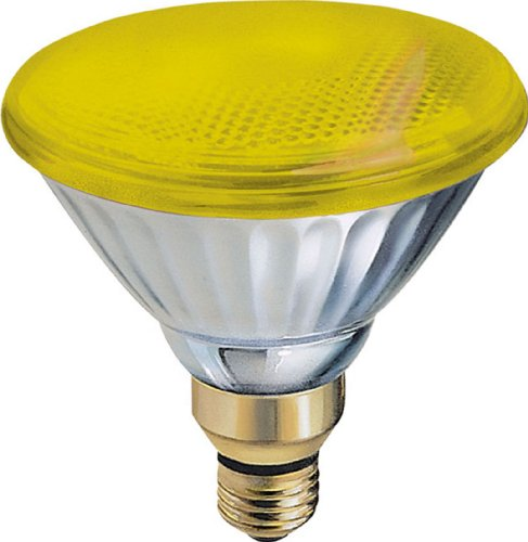 GE 20945 85-Watt PAR38 Outdoor Incandescent Bug Light, 6-Pack