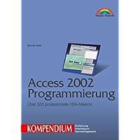 Access 2002 Programmierung - Kompendium Über 500 professionelle VBA-Makros (Kompendium/Handbuch)