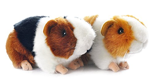 - Yair Yangtze Cute Guinea Pig Plush Soft Stuffed Animals Toys 7 Inch (2pcs)