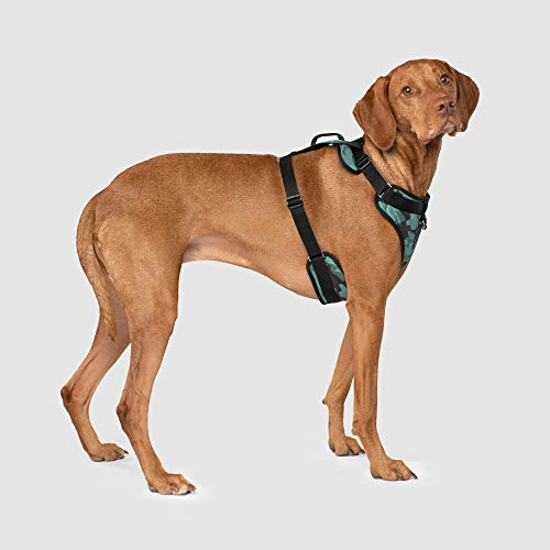 Canada Pooch | Everything Dog Harness | No-Pull Adjustable Dog Harness, Camo, L (Pooch Vest Canada)