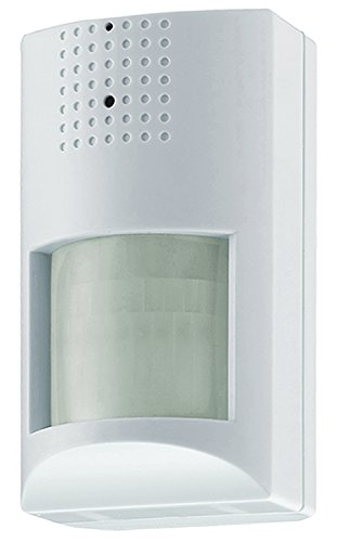 Hidden Pir Camera (Mace Easy Watch Hidden Camera in PIR Motion Detector Housing, For Covert Video Surveillance without Audio, 550TVL (EWC-PIR-RJ11))